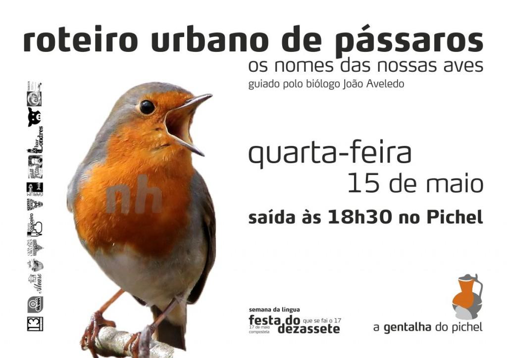 Roteiro urbano de pássaros