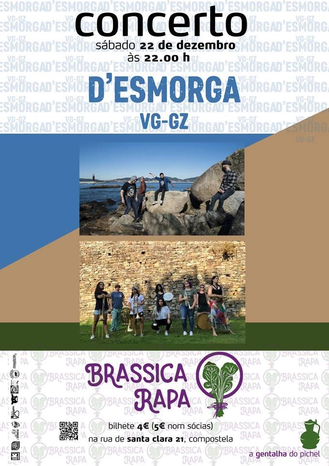 brassicasica